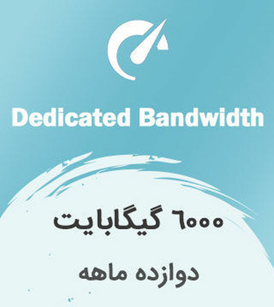 تصویر از اینترنت بیسیم اختصاصی دوازده ماهه با ترافیک 6000 گیگابایت بین الملل